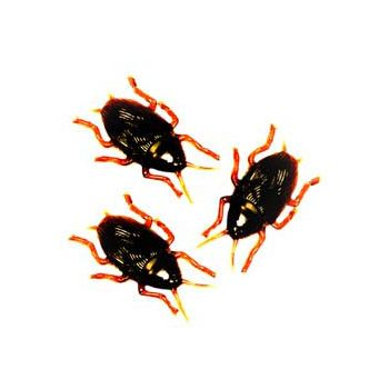 COCKROACHES  By THE GROSS