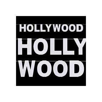 HOLLYWOOD   GLITTER BANNER