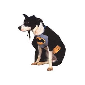 Batman Dog Costume