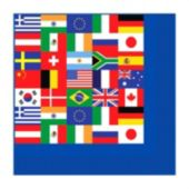 International Flag Beverage Napkins - 16 Pack