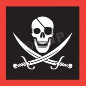 Pirate Party Beverage Napkins - 16 Pack
