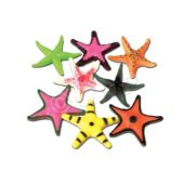 "4"" Star Fish - 12 Pack"
