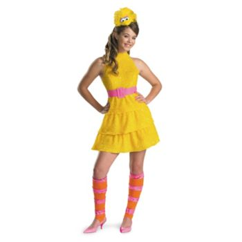 Big Bird ChildTween Costume