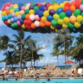 Balloon Drop Kit - 2000 Balloons