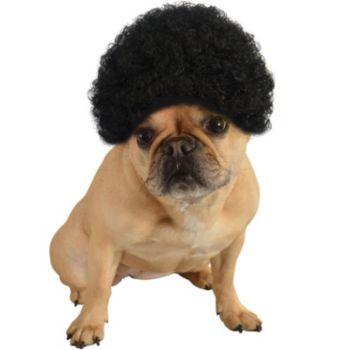 Pet Afro Black Wig