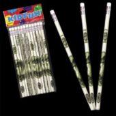 100 Dollar Bill Pencils