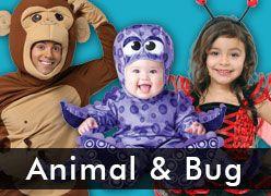 Animal & Bug