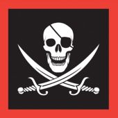 Pirate Party Lunch Napkins - 16 Pack