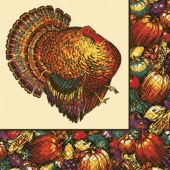 Autumn Turkey Beverage Napkins-30 Pack