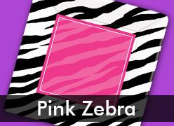 Zebra Pink Birthday Theme Party