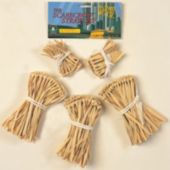 Wizard Of Oz - Scarecrow Straw Accessory Kit