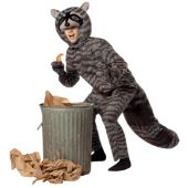 Raccoon Adult Costume
