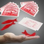 Fortune Fish-72 Pack